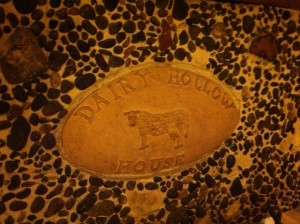 photo (49)dairyhollowcow
