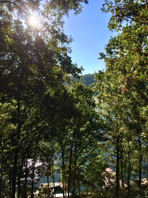 Lake Ann photo